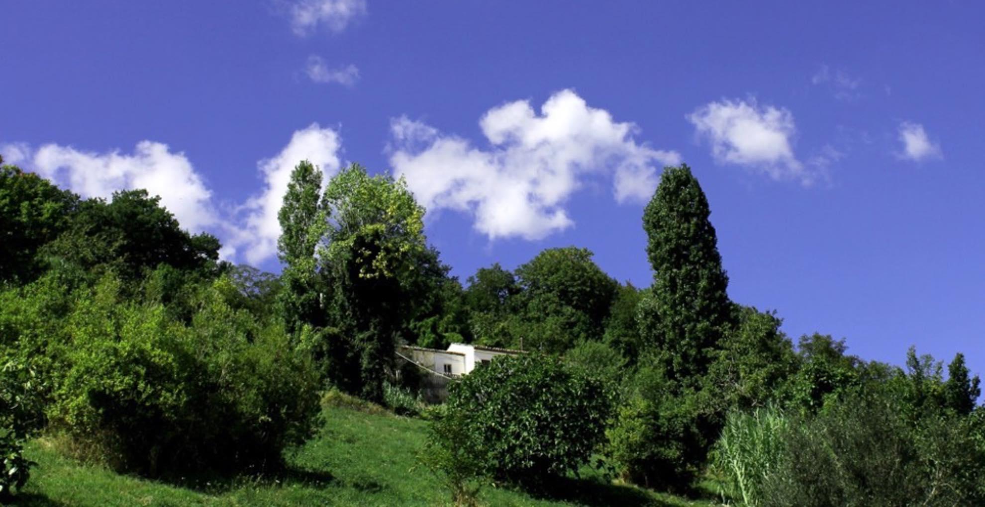 lammidia-winery